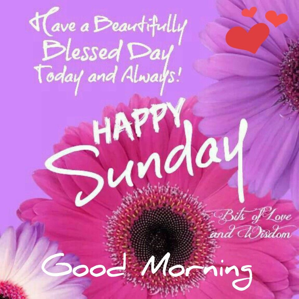 Happy sunday good morning pinterest happy sunday blessings happy sunday kristyandbryce Images