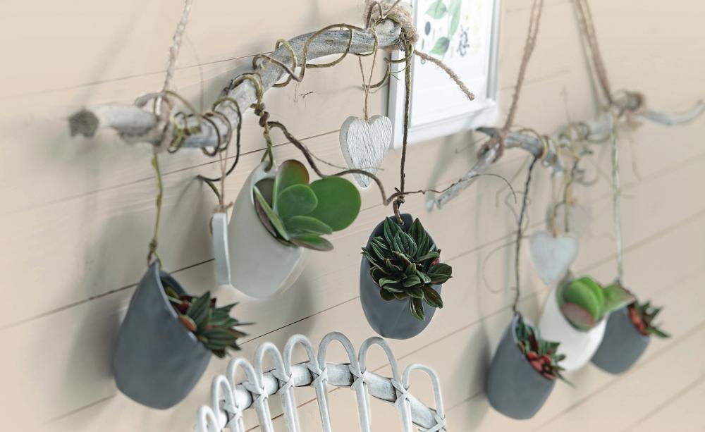 Wanddeko mit pflanzen wanddeko farbenfroh und wenn man for Pflanzen wanddeko