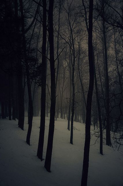 white shadow by e r I k a