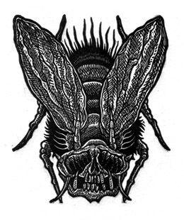Tom Huck, Flyvillian Edurnum Rectus