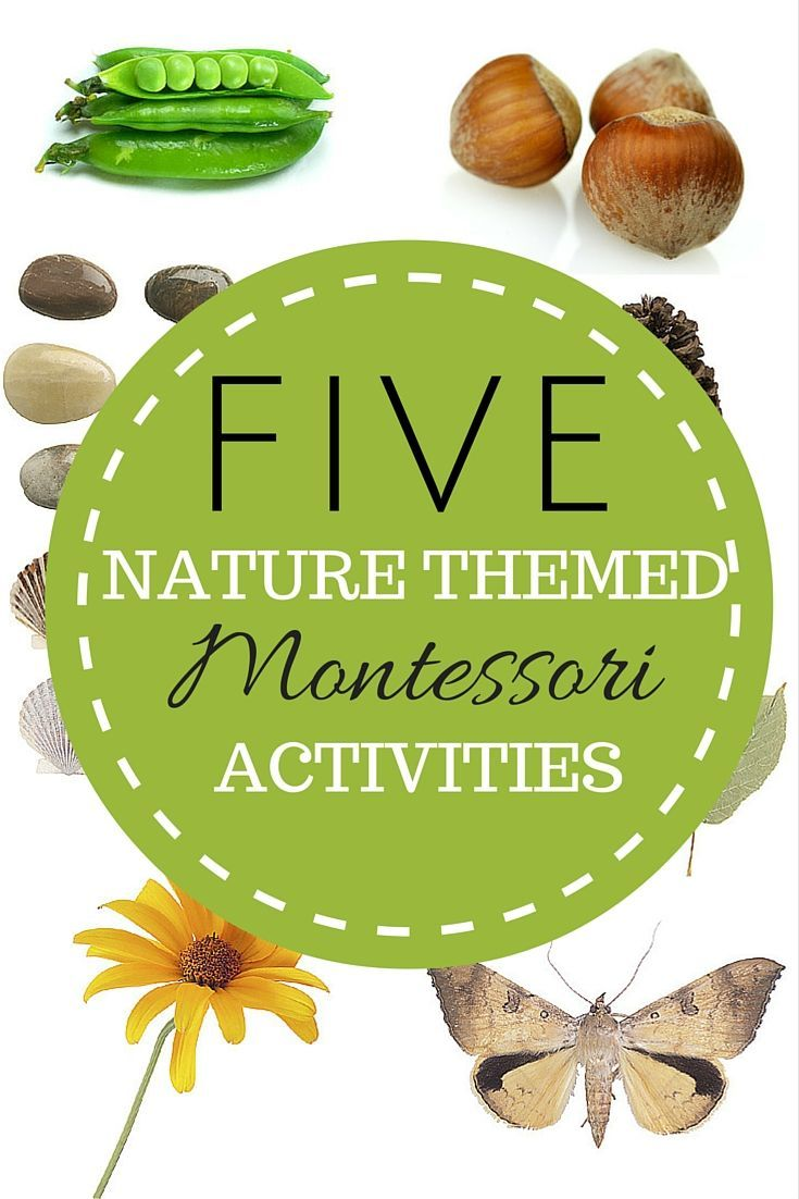 Fun Montessori Nature Activities With Math Printables