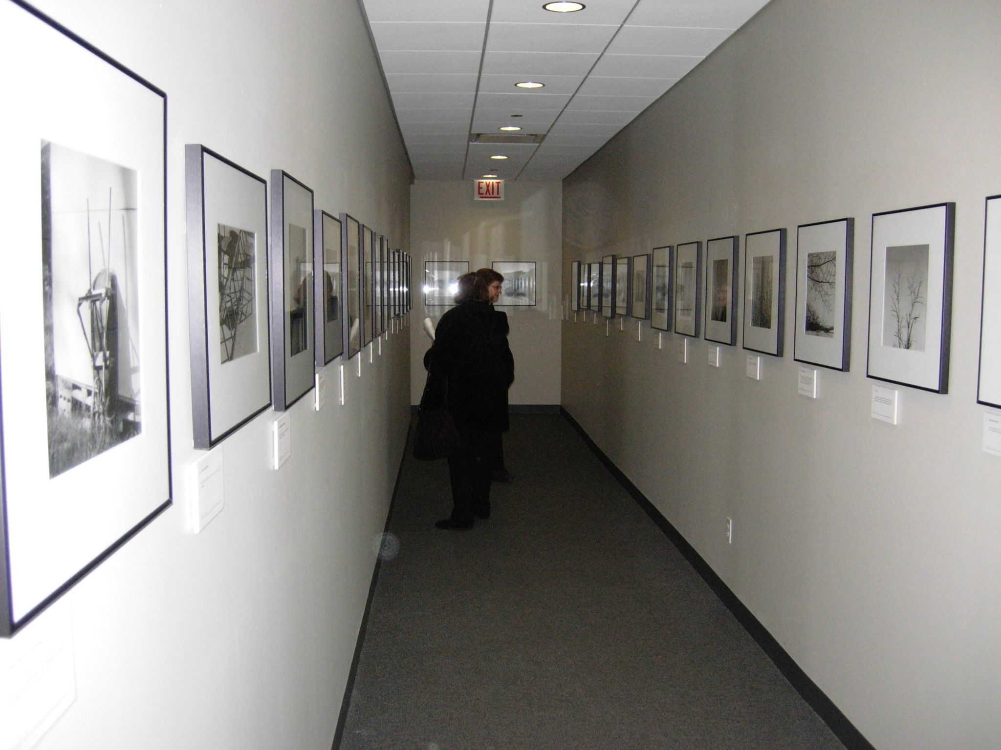 exhibit photography museum - Pesquisa Google