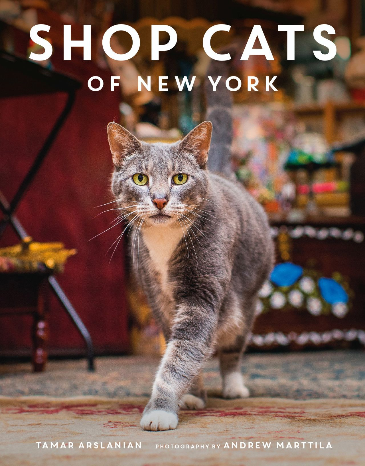 Cats Are The New Greeters In Nyc Stores Cats New York Cats Bodega Cat