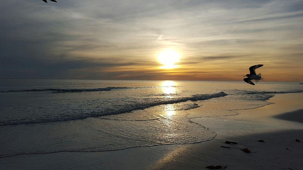 Condo vacation rental in destin area from for