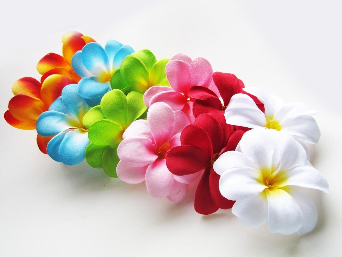 24 Assorted Hawaiian Plumeria Frangipani Silk Flower Heads 3 Artificial Flowers Head Fabric Floral Supplies Wholesa Artificial Silk Flowers Artificial Flowers Floral Supplies