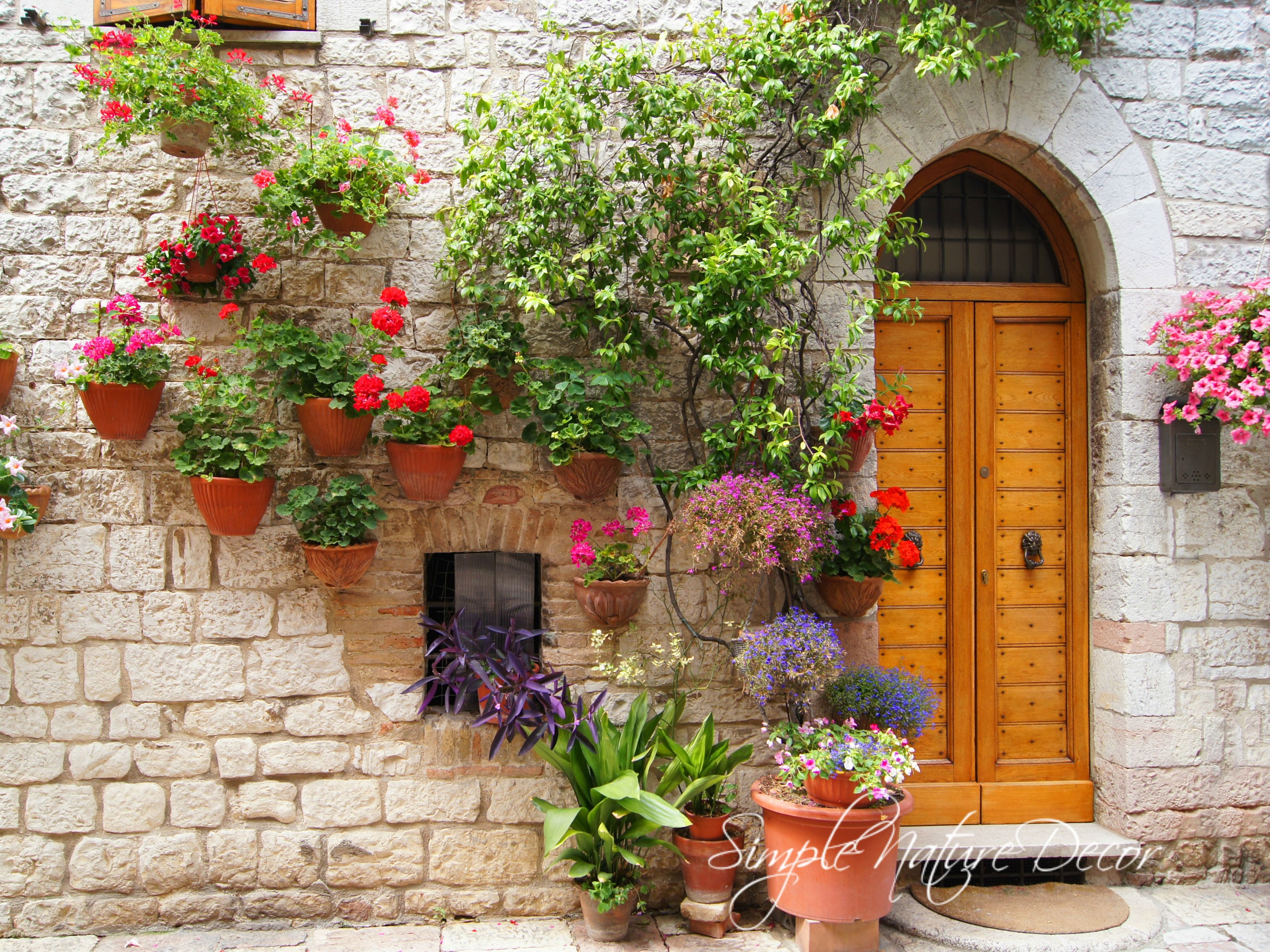 brick wall flower tuscany pots on a wall doors and windows pinterest tuscany and front yards. Black Bedroom Furniture Sets. Home Design Ideas