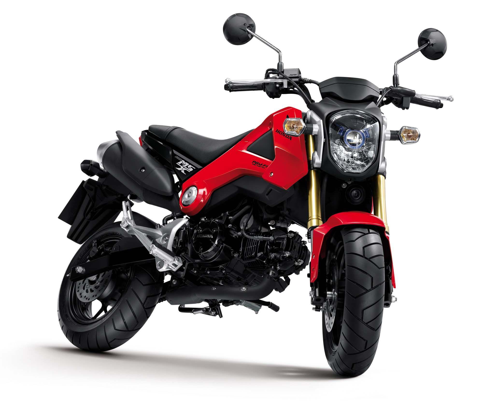 Honda Msx125 Will Make A Monkey Out Of You Honda Msx 125 Honda