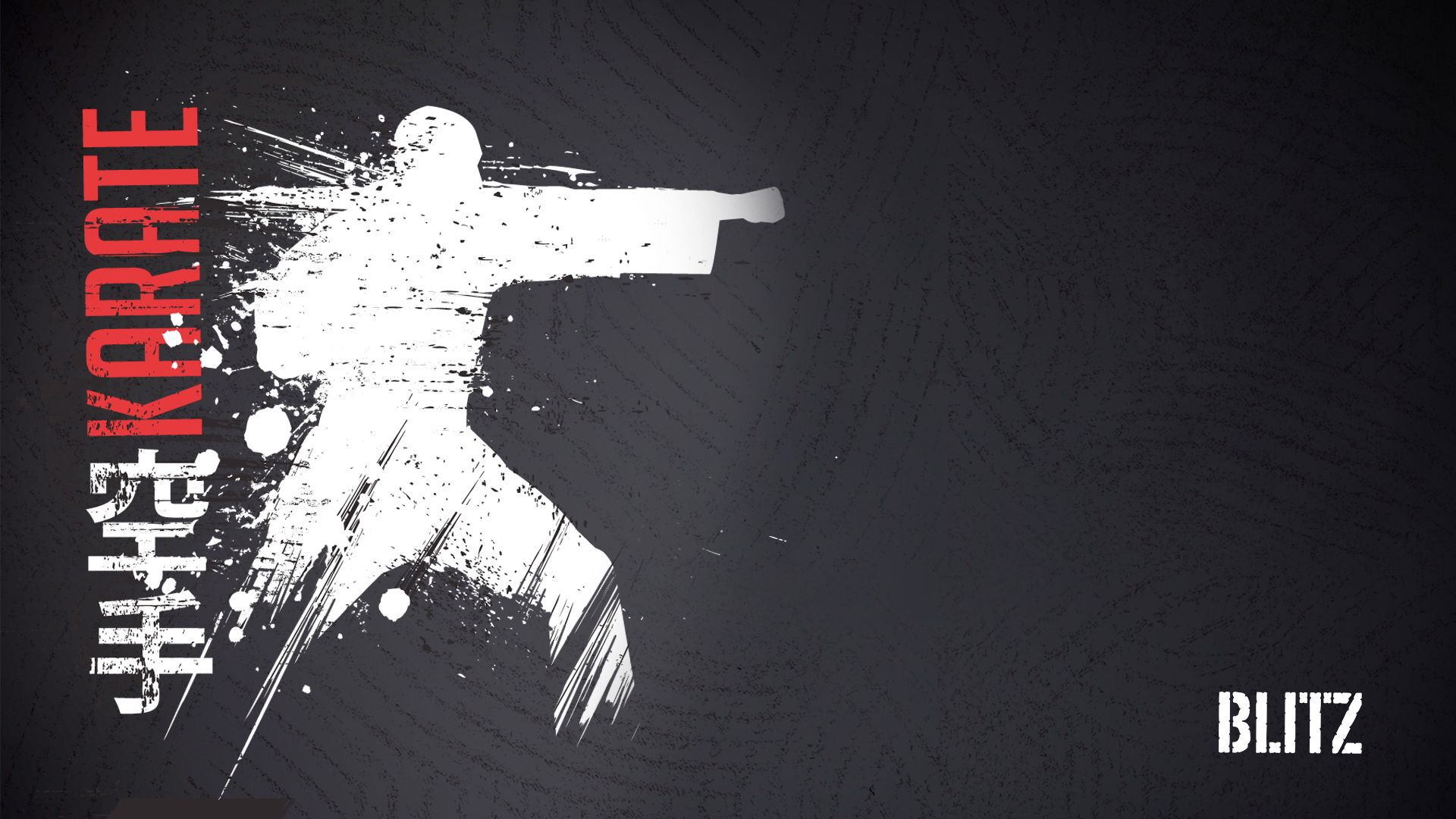 blitz karate wallpaper 1920 x 1080 martial arts