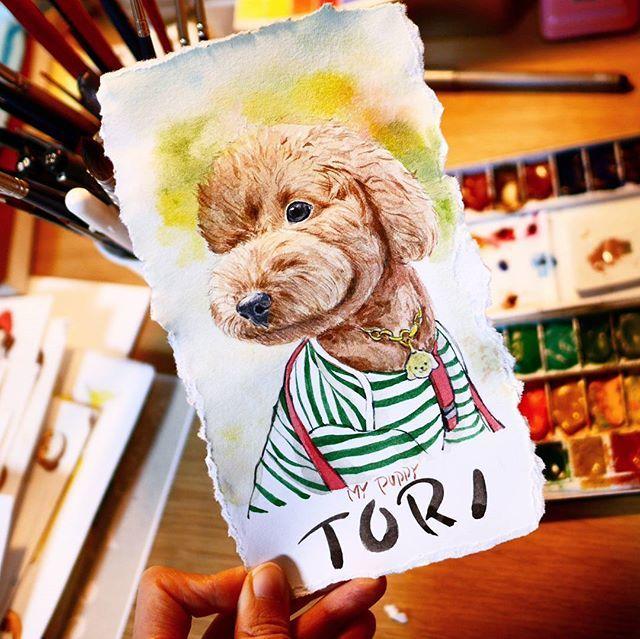 . My puppy T O R I  그림이 영^^; 토리는 실물이 훨씬 나은것같아요