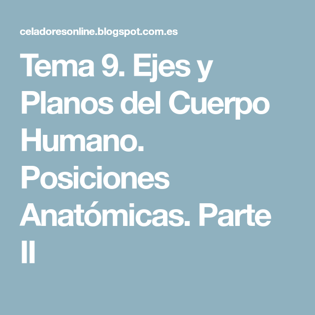 Tema 9. Ejes y Planos del Cuerpo Humano. Posiciones Anatómicas ...
