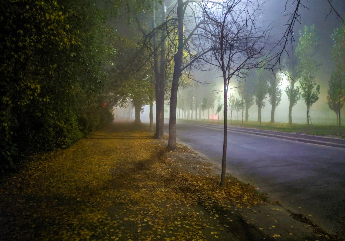 صورة عالية الدقة خالية من الضباب الطبيعة الظاهرة الجوية الصباح الضباب الشجرة الضوء ز Photo Country Roads Sidewalk