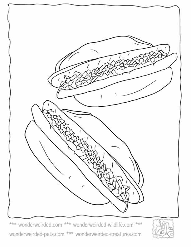 Hot Dog Picture To Color Echo S Free Food Coloring Pages Hot Dog