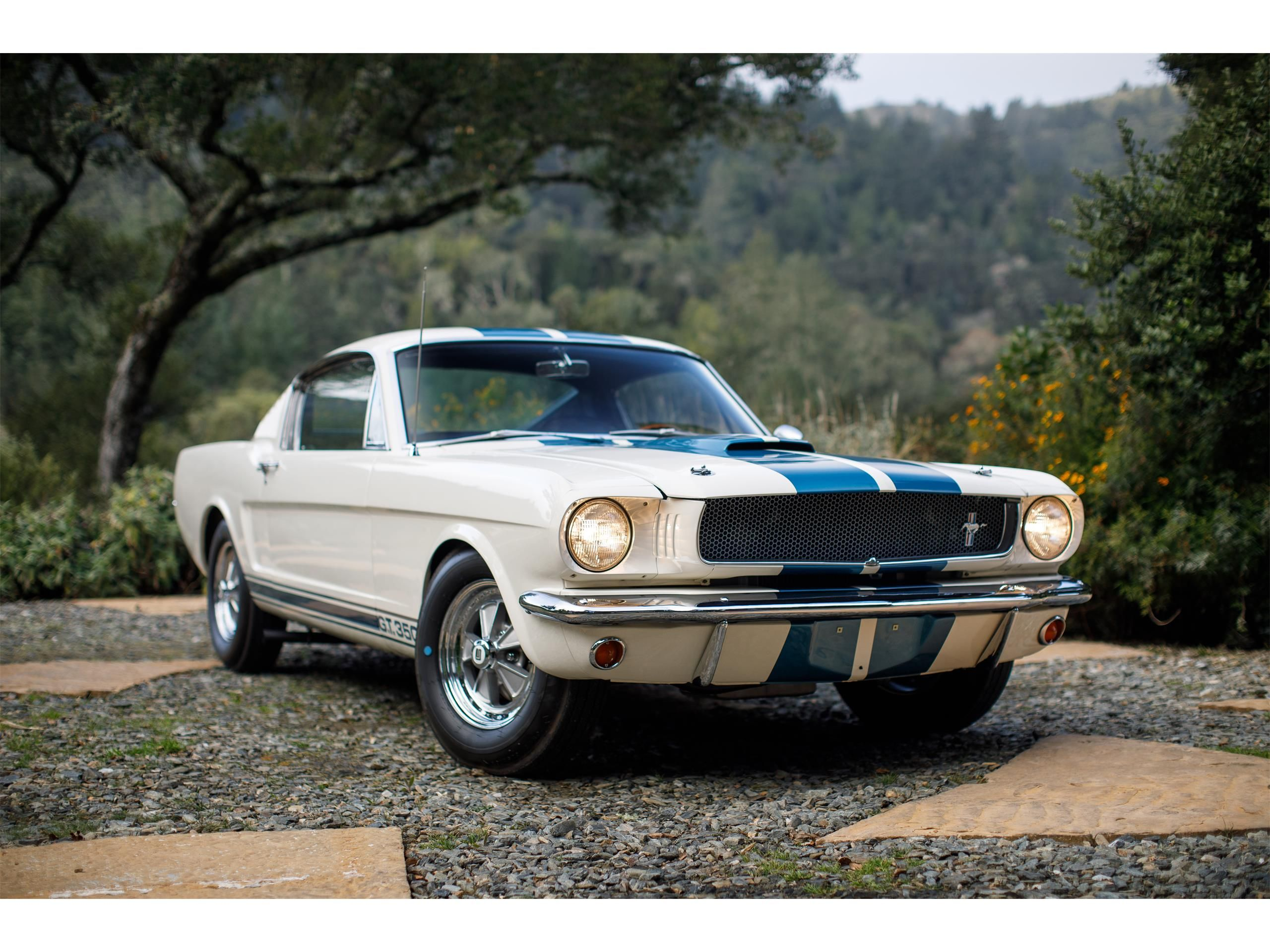 1965 shelby gt350 for sale listing id cc 1092547 classiccars