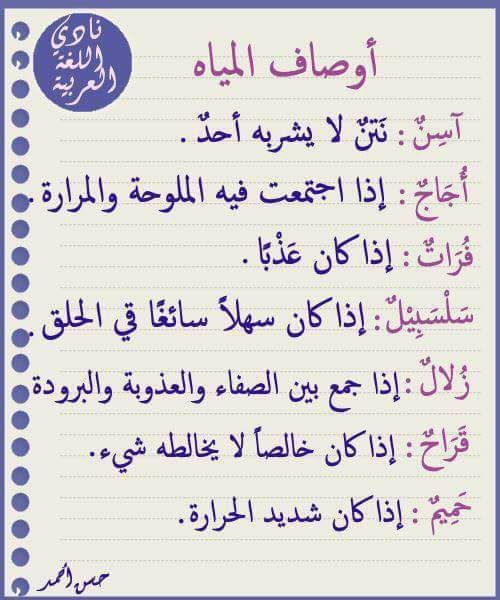Pin By Ređ Roṥe On Arabic العربېہ لغة الضاډ Words Quotes Words Islamic Phrases