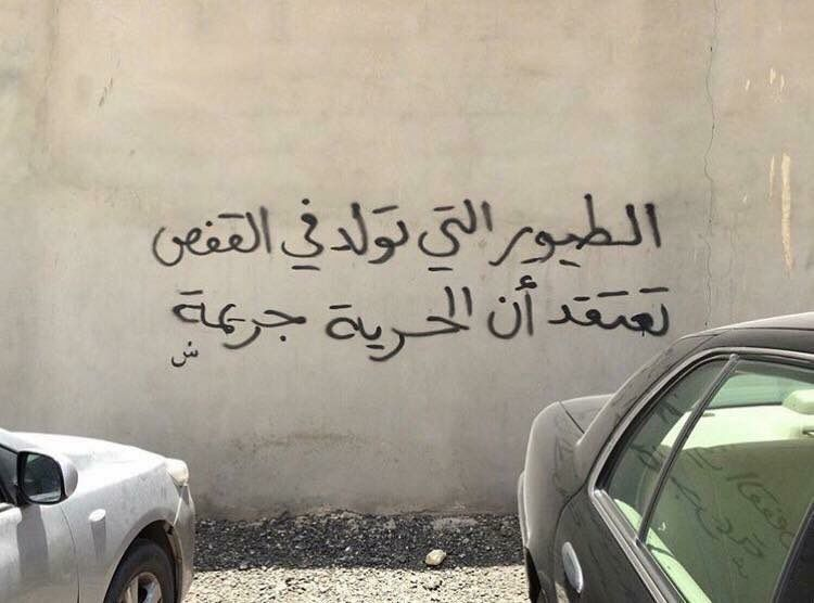 Birds Born In Cages Think Freedom Is A Crime Street Quotes Love Quotes Wallpaper Beautiful Arabic Words