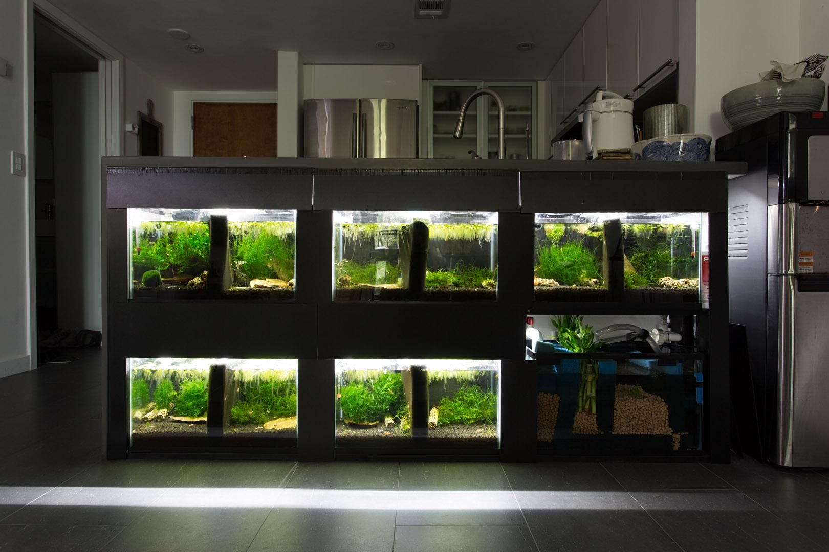 6 X 10g Shrimp Rack Under Kitchen Countertop 56k Page 9 Fishing Room Fish Gallery Fish Tank
