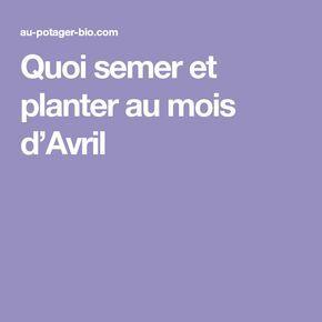 Quoi semer et planter au mois d'Avril en 2020   Avril, Potager, Potager bio