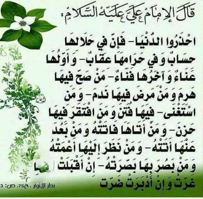 قال مولانا امير المؤمنين عـــلي صلوات الله وسلامه عليه Word Search Puzzle Imam Ali Math