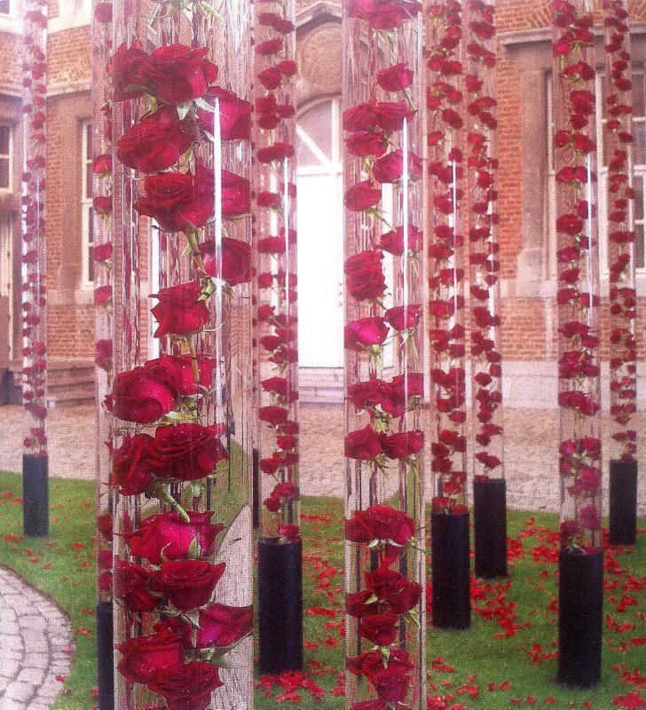 daniel ost famous florist amazing sensation flora and