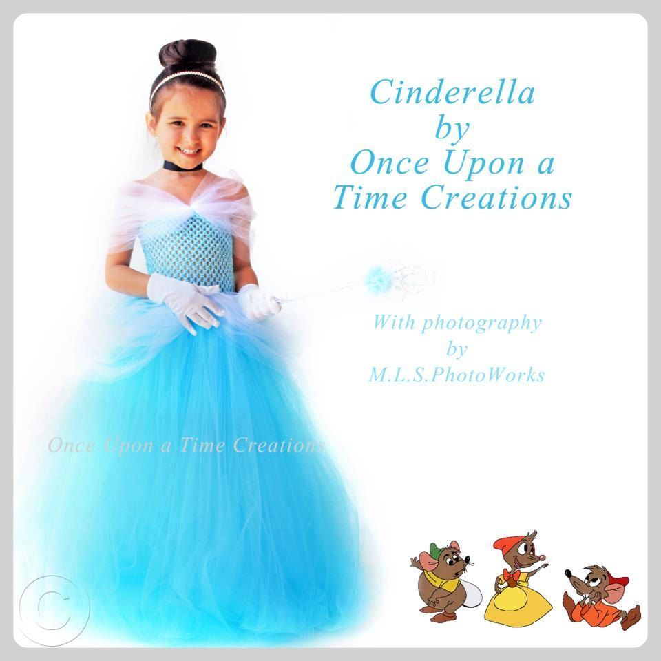 Cinderella Dresses Made With Tulle