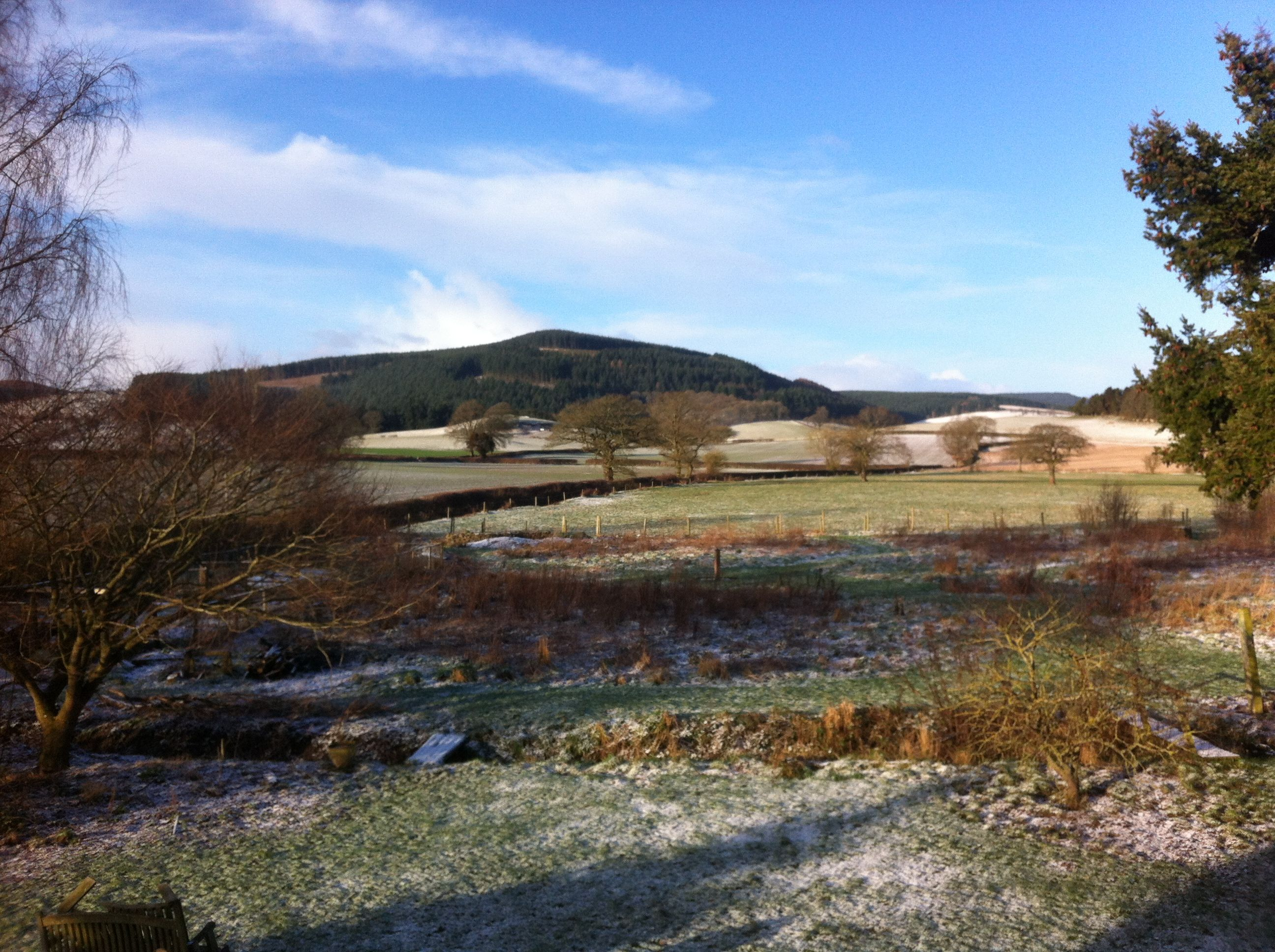 February 2013 - a mix of blizzards & blue today