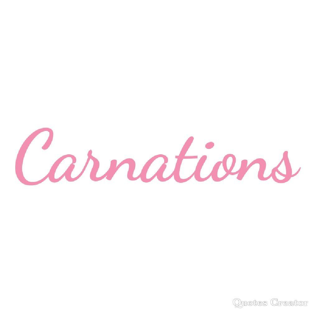 Pin Di Nana Su Carnation Sweetness Garofani