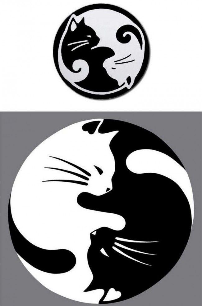 ying yang katzen tattoo vorlage mehr  katzen tattoo