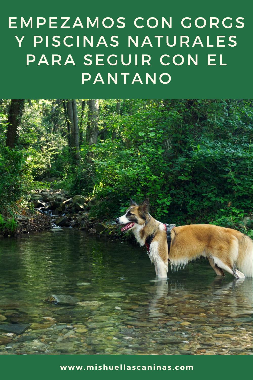 Empezamos Con Gorgs Y Piscinas Naturales Para Seguir Con El Pantano Piscinas Naturales Piscinas Saltos De Agua
