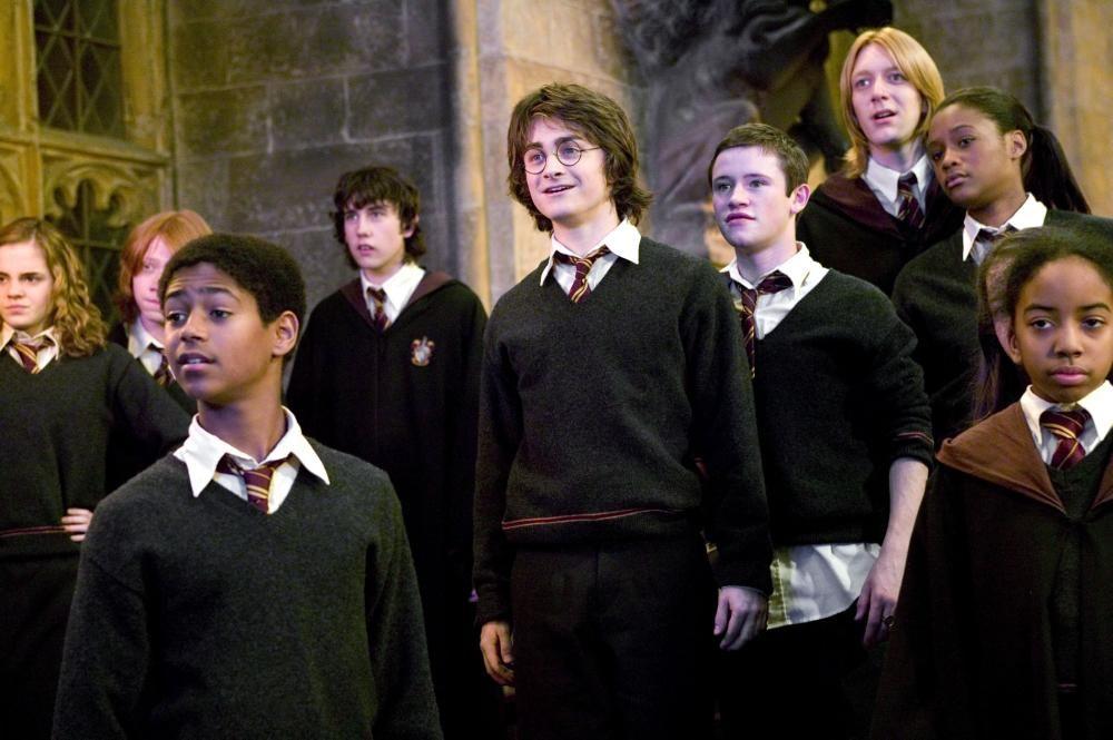 Harry Potter The Goblet Of Fire Harry Potter Goblet Harry Potter Characters Harry Potter Movies