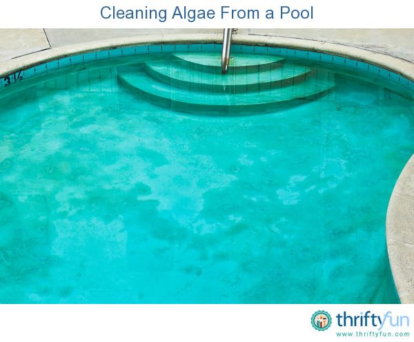 How To Get Rid Of Algae In A Hot Tub
