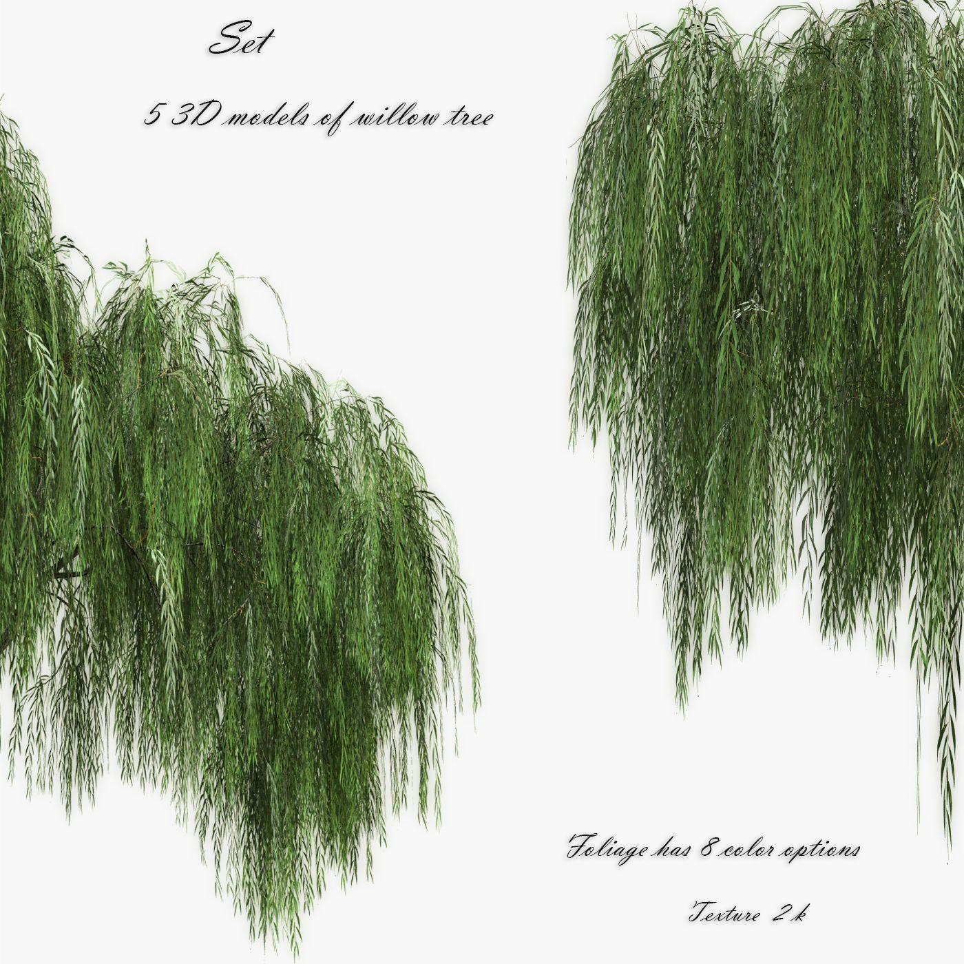 Set Tree Willow 3d Model Trees To Plant 3d Model Tree