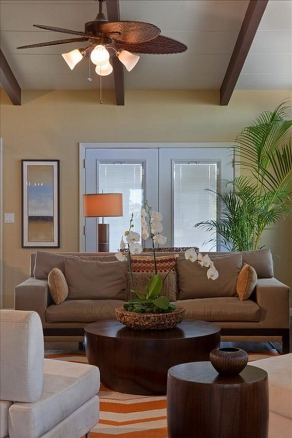 Tropical Living Room Design With Brown Couch And Palm Tree