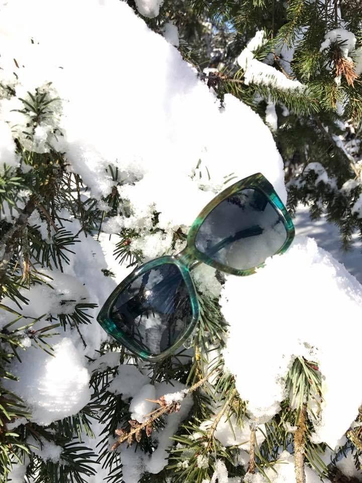 33f0d226828c SALT Optics Alycia sunglasses from Risi Optique.