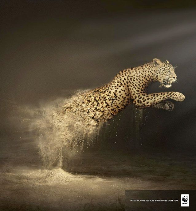 50 Creative Animal Print Ads And Advertising Ideas For You