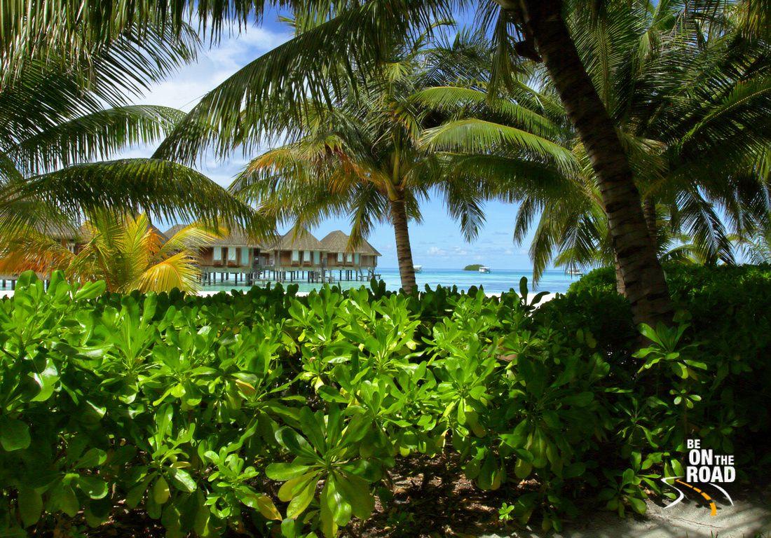 Tropical Island Tipps