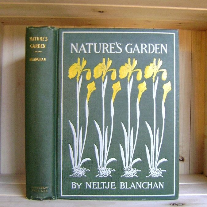 Nature S Garden 1900 Antique Book By Neltje Blanchan Color Plates