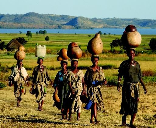 Women in Ethiopia carry water from a lake (in background) back to their homes. The time spent hauling water can be significant in areas where sources of domestic water supply are limited. In the developing nations depend on recession agriculture, a practice in which crops are planted in soils saturated by receding floodwaters.