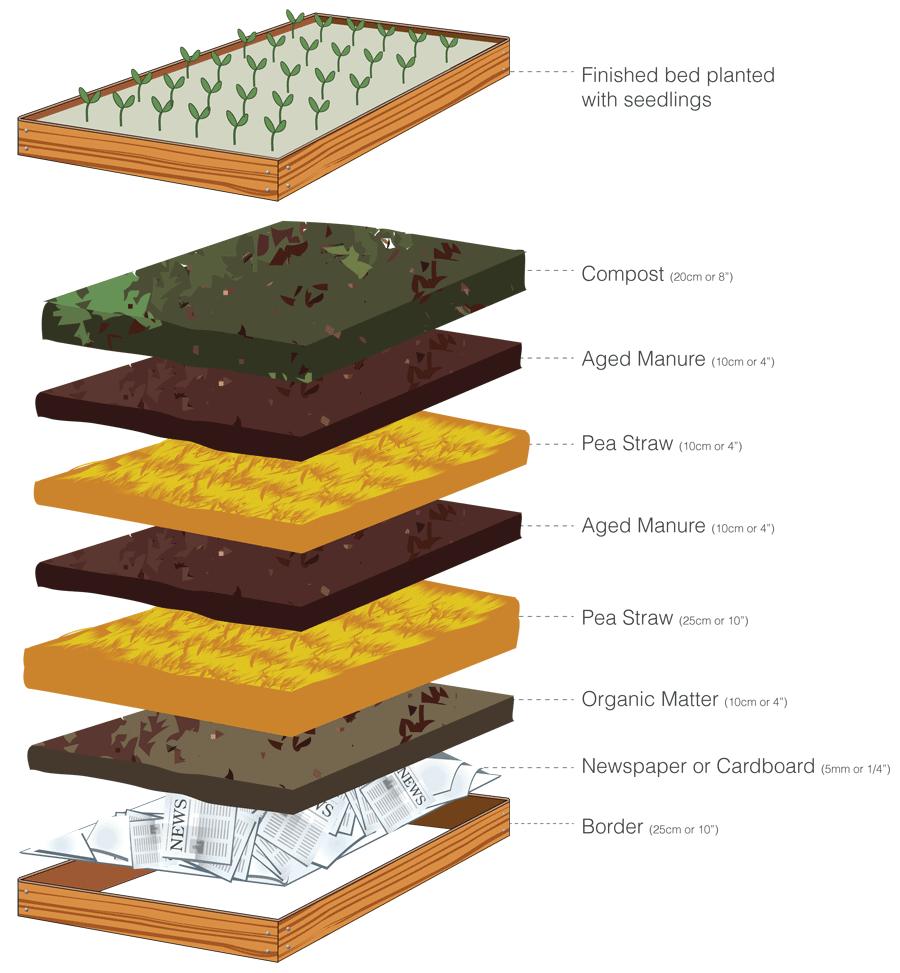 vegetable garden layer diagram printable pdf  [ 900 x 973 Pixel ]