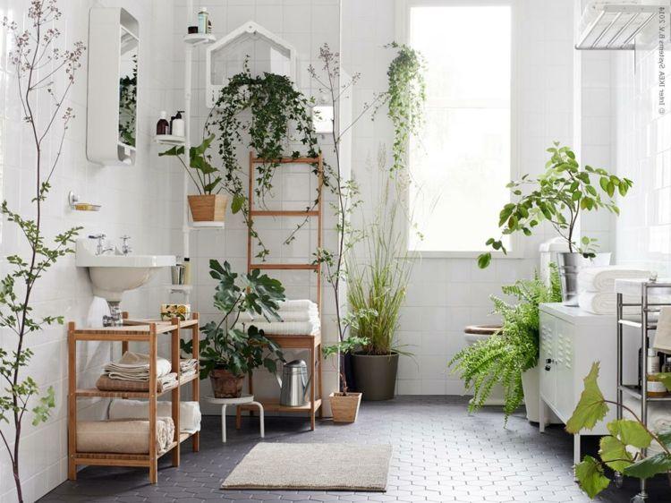 Mit Diesen Pflanzen Furs Bad Eine Tropische Wohlfuhloase Einrichten Pflanzen Im Badezimmer Badezimmerpflanzen Pflanzen Furs Bad