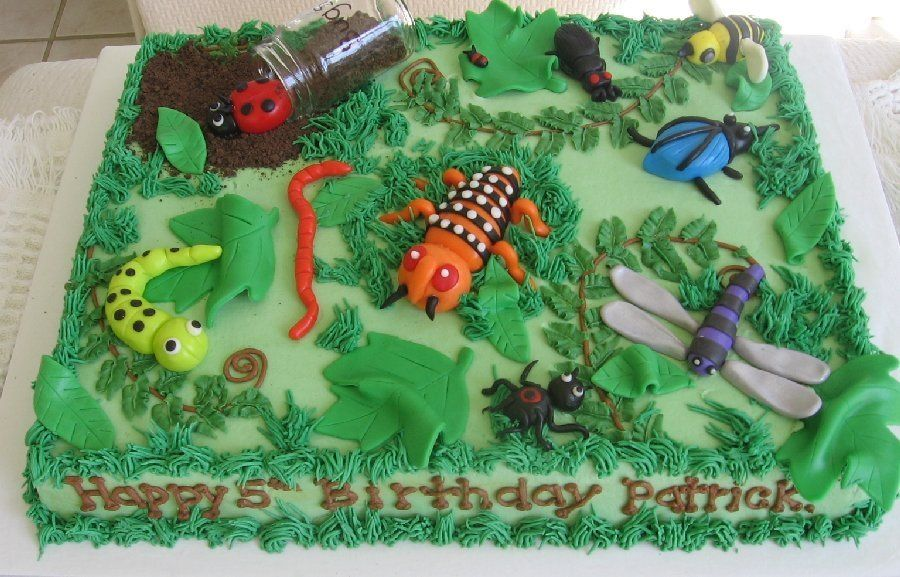 Fabulous Bug Cake Bug Birthday Cakes Bug Cake Boy Birthday Cake Funny Birthday Cards Online Overcheapnameinfo