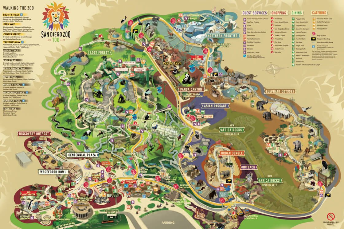 Map Of The San Diego Zoo World Exploring Pinterest San Diego - San diego on us map