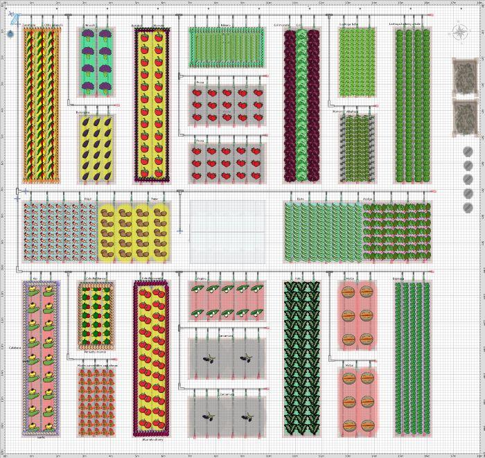Garden Plan - 2014: CDC 16 | Garden layout, Community ...