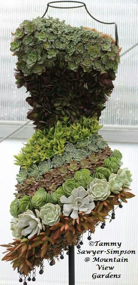 Just beautiful!!!  Created by Tammy Sawyer-Simpson, Mountain View Gardens