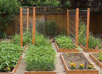 Garden Vegetable Trellis Small Urban Garden Small Urban Garden