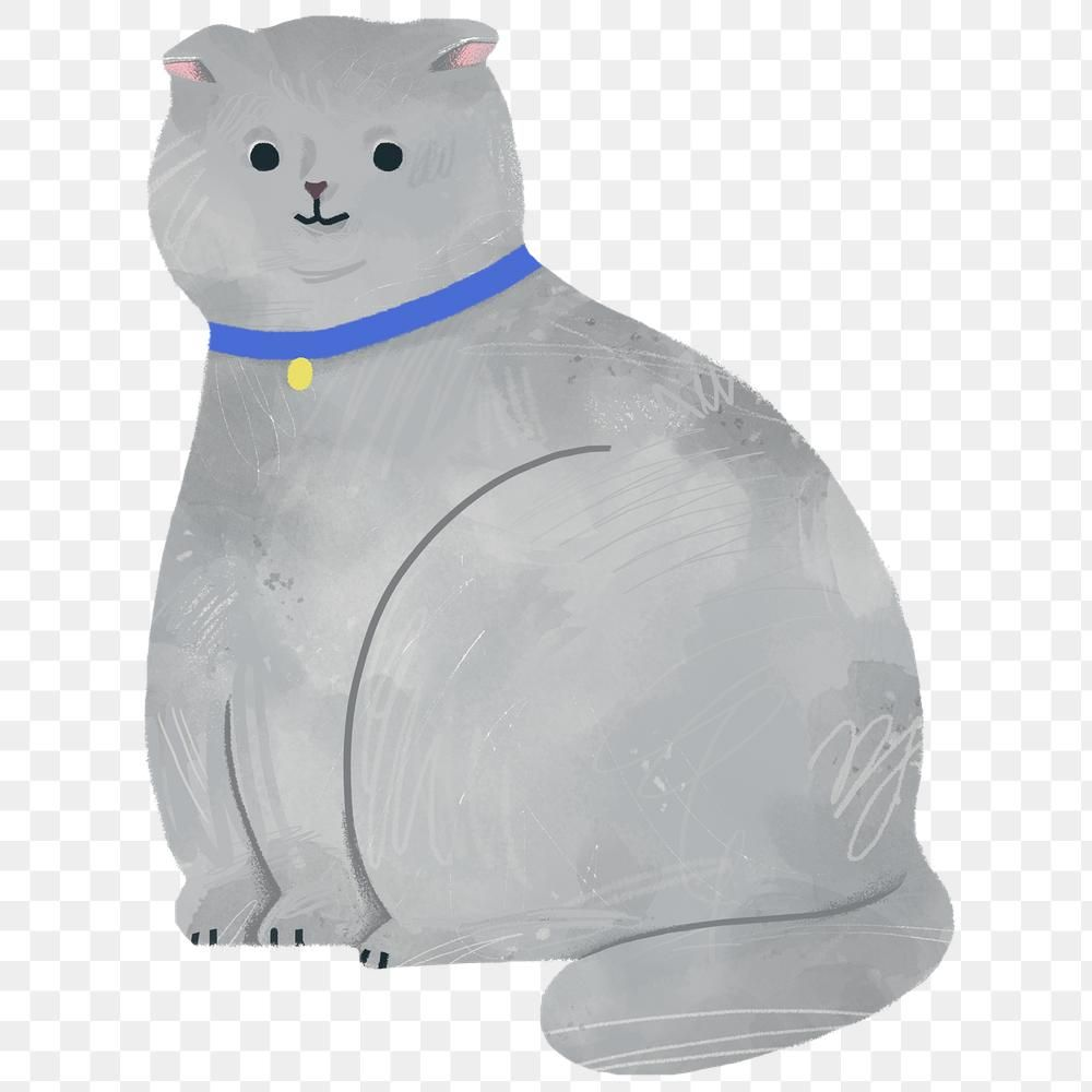 Funny White Cat Pet Cute Cat Png Transparent Clipart Image And Psd File For Free Download Cat Illustration White Cat Cute Animals