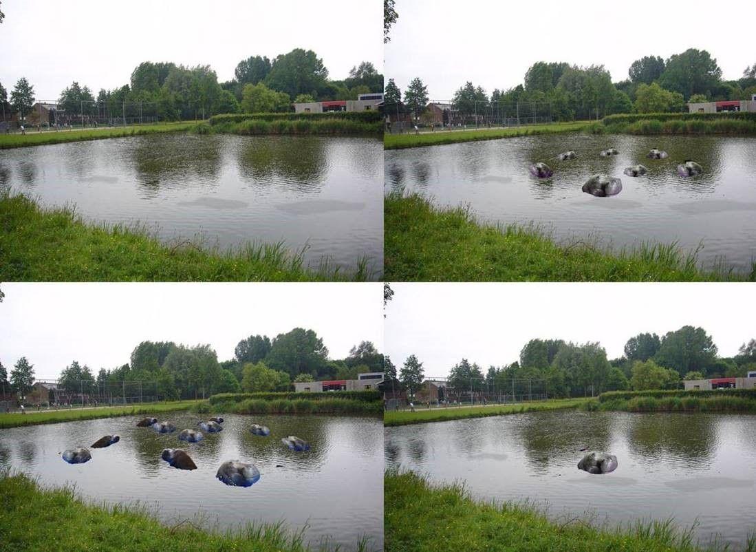 """In deze vijver duiken onverwachts en schijnbaar willekeurig 12 nijlpaardkoppen op uit de grote vijver  rondom de speeltuin. Het kunstwerk is een bijzonder onderdeel van de verbouwing van de speeltuin  """"De Stormpolder"""".  Met dank aan: De Stormpolder - Gerard Bons, Ronald Schinkelshoek, Trudy Poot, Ton Groen, Peter Verkade, Bijl Polyester, Tech-Air-M.van Zwol, Zilverton-René Jansen, Amco BV- Rien Hout, Michel - Bersik"""