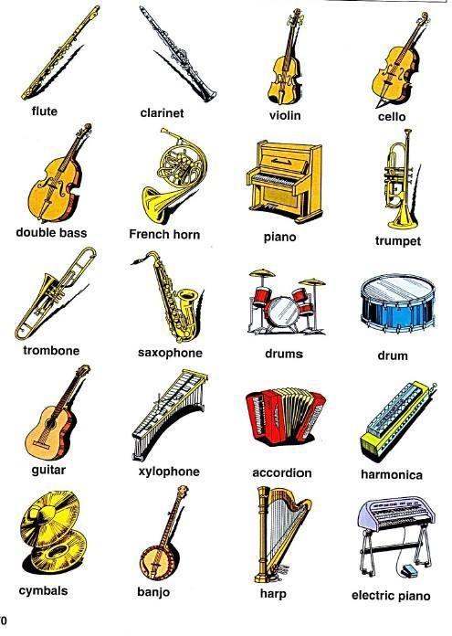 Musical Instruments ดนตร