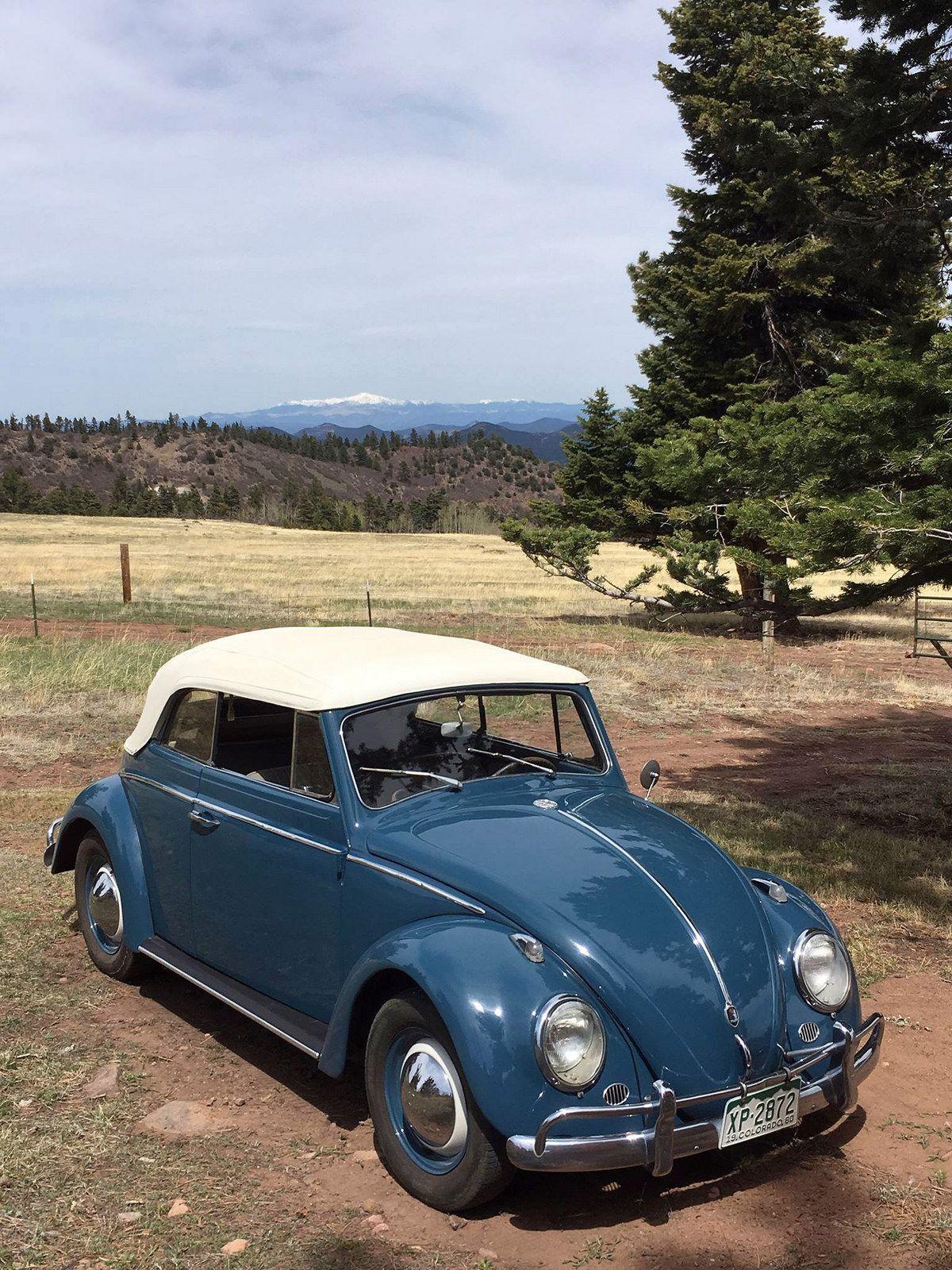 Rocky Mitchell Volkswagen Vw Cars Volkswagen Beetle