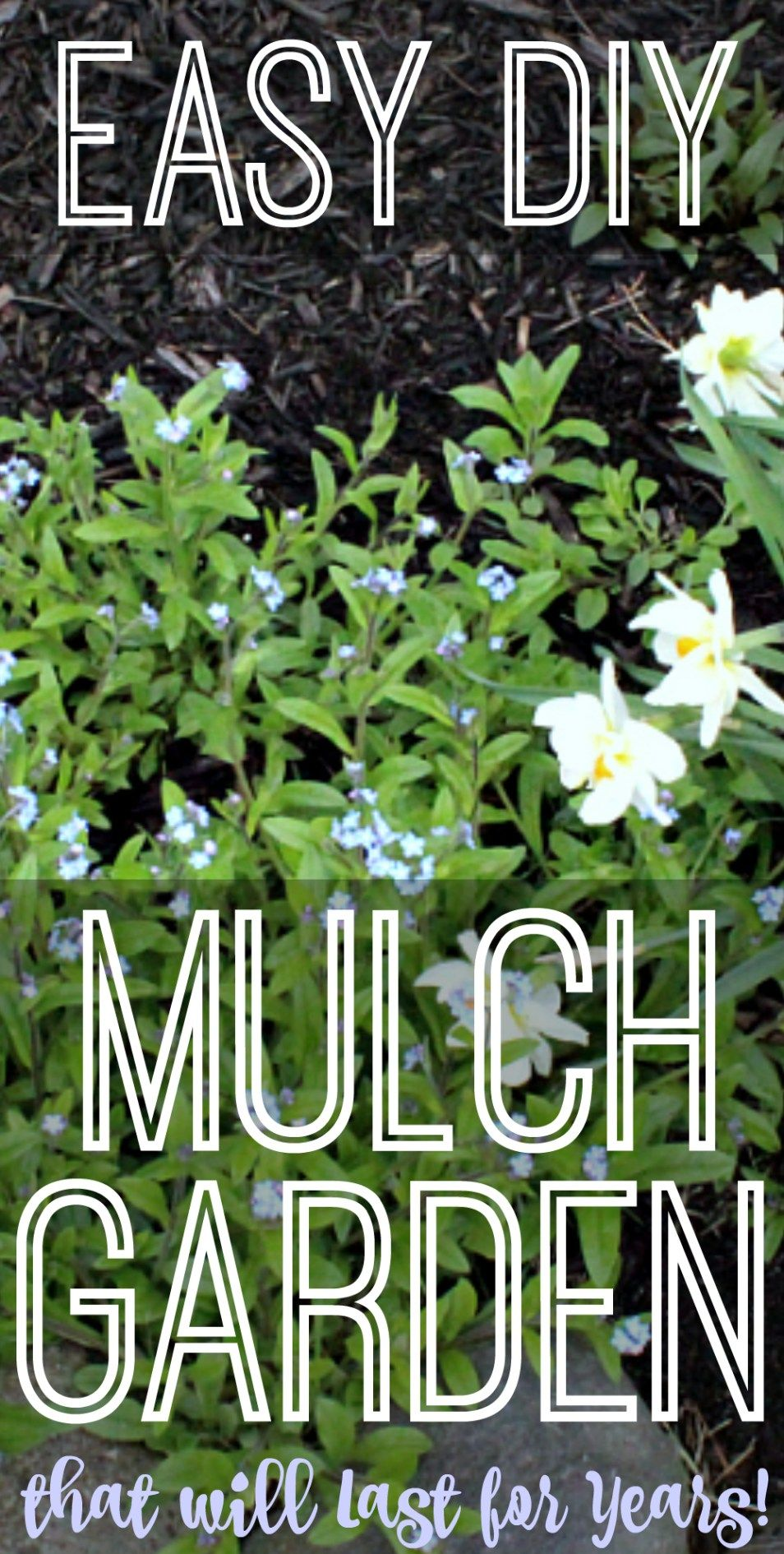 Photo of Easy DIY Mulch Garden that will Last for Years!