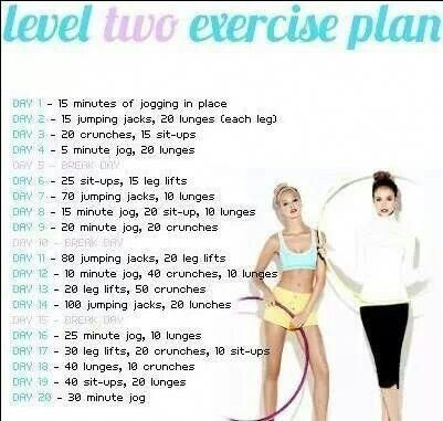 work out plan exerciseplan  lose 20 pounds workout plan